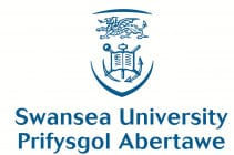 Swansea2