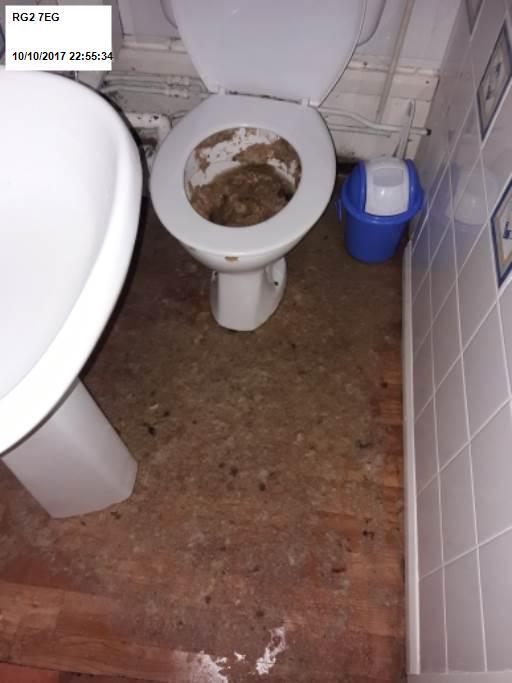 Overflowing Toilet - Metro Rod Reading