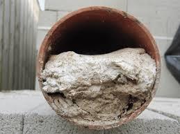 wet wipes In London drain