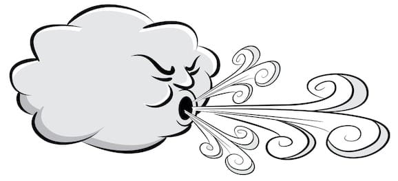 Wind Can Affect Your Drains!