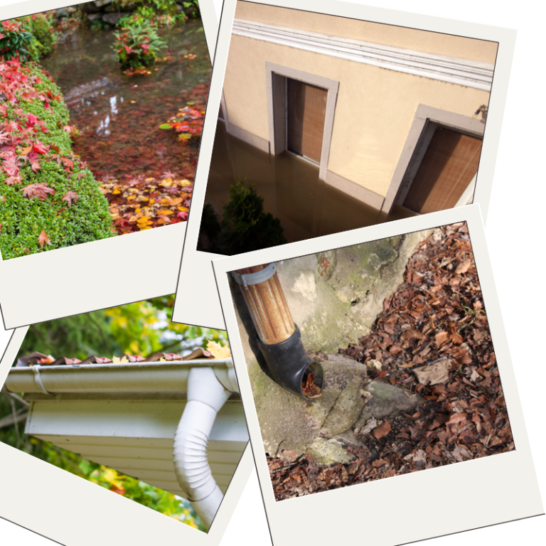 autumn drainage issues